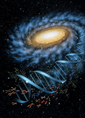 DNAupdate